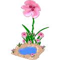 Flower Power Shower
