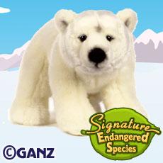 Signature Endangered Polar Bear