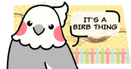 It's A Birb Thing Banner