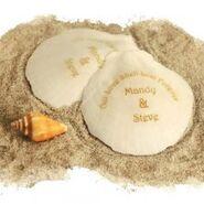 Personalized-seashells-220