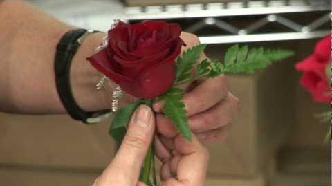 Wedding_Flowers_&_Floral_Arrangements_How_to_Make_a_Boutonniere_for_a_Wedding_or_a_Prom