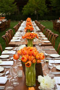 Beautiful-Orange-Tulips-for-A-fall-wedding