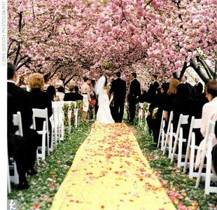 Spring wedding decoration, spring wedding decorations, wedding decorations.jpg