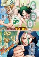 Dr Stone ch127p1 Issue 48 2019