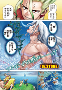 Dr Stone ch141p1 Issue 14 2020
