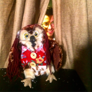 Weird owl and shane