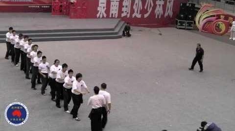 Qi Gong Demonstration by Master James Chee in Quanzhou 2010
