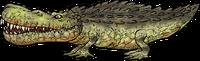 CrocodileWhole.png