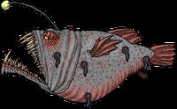 AnglerSickWhole.png