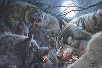 Werewolf pack.jpg