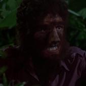 Werewolf David 2