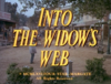 Into the Widow's Web.png