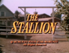 The Stallion.png