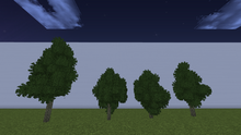 SpruceS.png