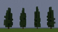 CypressS.png