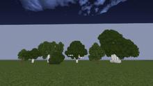 LeafyForest.png