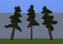 RedwoodM.png