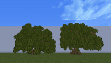 WeepingWillow.png