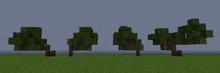 HawthornS.png