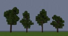 CottonwoodS.png