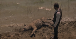 Ww creatures bengal tiger the raj dead