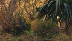 The raj landscape 04