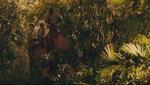 The raj elephant howdah 03