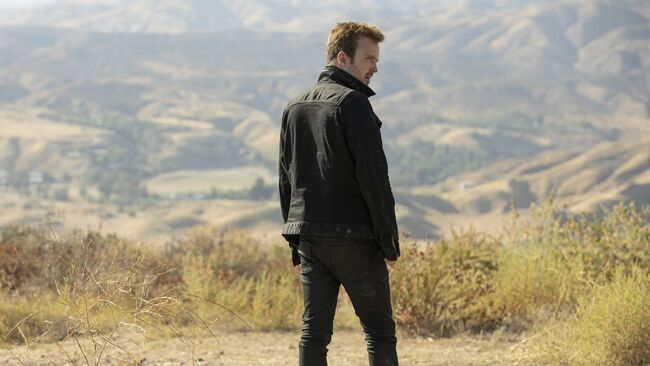 Promotional image of Caleb Nichols standing in a field on Westworld, season 3, episode 7: Passed Pawn.
