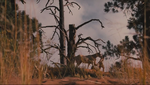 Ghost nation terrain 03