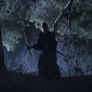 SW Samurai-1.jpeg