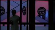 Shogunworld development glass doors with sw logo