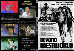 Beyond-westworld-full cover art.jpg