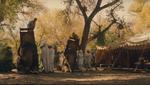 The raj elephant howdah 07