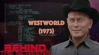 Westworld the first film with CGI (and its source code)