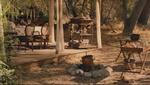 The raj hunting camp fancy pavilion 01