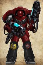 Blood Scorpions Primaris Inceptor