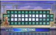 Wheel of Fortune 2003.jpg