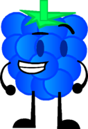 Blue Raspberry FR