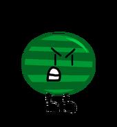 IMG 7026