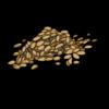 Squashseed.png