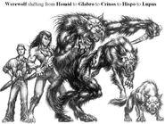 Werewolf5forms