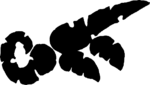 FeraGrondr