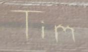 Timsigcabin