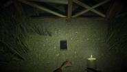 Crushed Phone on ground