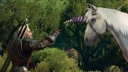 W3 SS Geralt i jednorożec