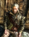 Tw2 screenshot armor quiltedleather.png
