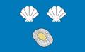 Flaga cidaris.PNG