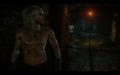 W2 SS Geralt 60.png