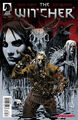 The Witcher Dark Horse cover no1.jpg