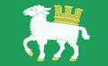 Flaga Hołopole.png